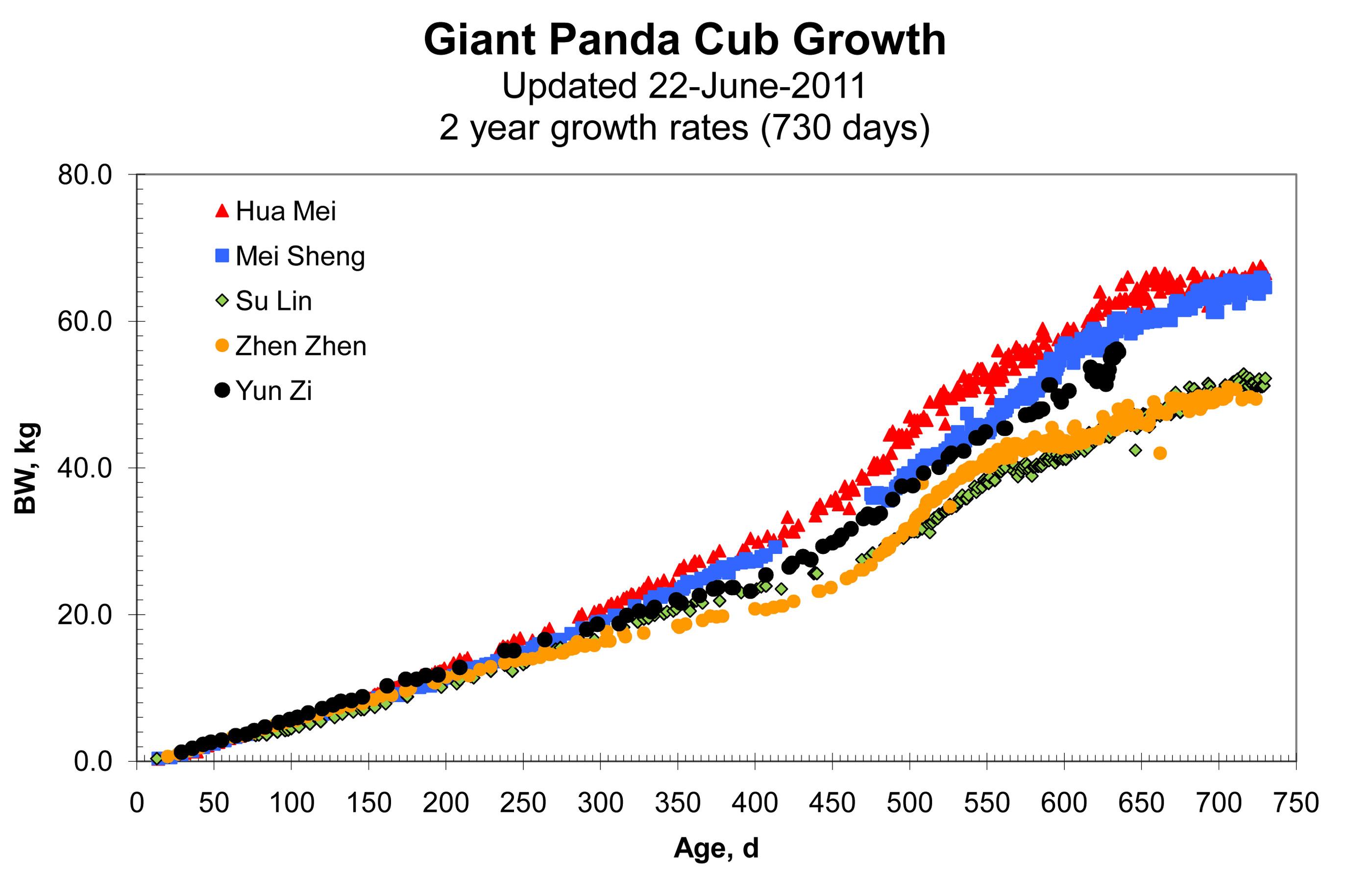 Panda cub chart thanks nvjuhfo Choice Image