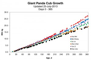 This panda cub growth chart shows that Xiao Liwu is about the same size as his sister, Zhen Zhen, just a few days before his first birthday. Click on image to enlarge.