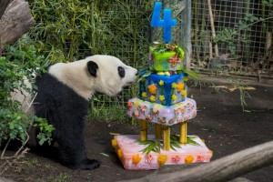 Yun Zi's fabulous 4th birthday cake.