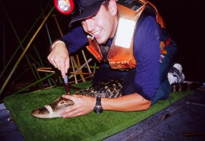 Catching and tagging alligators was, happily, part of the adventure!