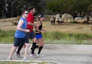 Safari Park Half Marathon