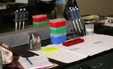 Individual mini stations with pipettes gave us the chance to work in groups of two in order to complete a process known as polymerase chain reaction that makes copies of a single region of DNA, in this case, some California condor DNA.