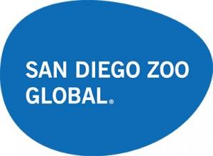 SDZG Logo