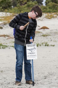 Austin Smith, a member of the San Diego Zoo Safari Park Conservation Corps, hammers a sign into the sand at Naval Air Station North Island, designating a protected nesting area for the western snowy plover, a threatened shore bird.