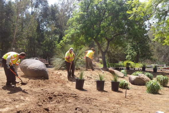 How To Grow a Water-Smart Landscape by the San Diego Zoo Safari Park's Horituculture Experts