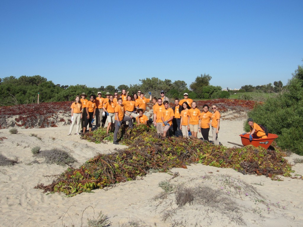 Students stand proud over their pile of ice plant at the end of the day.