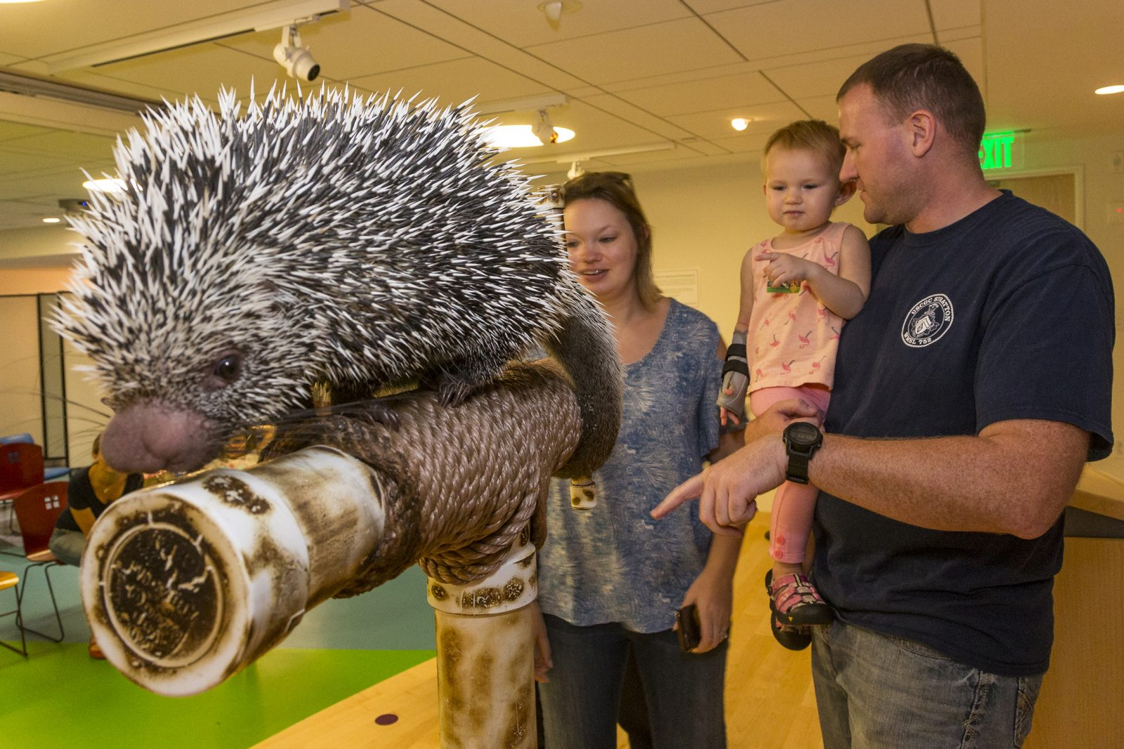Zoos Bring Animal Kingdom to Patients at Boston Children's Hospital
