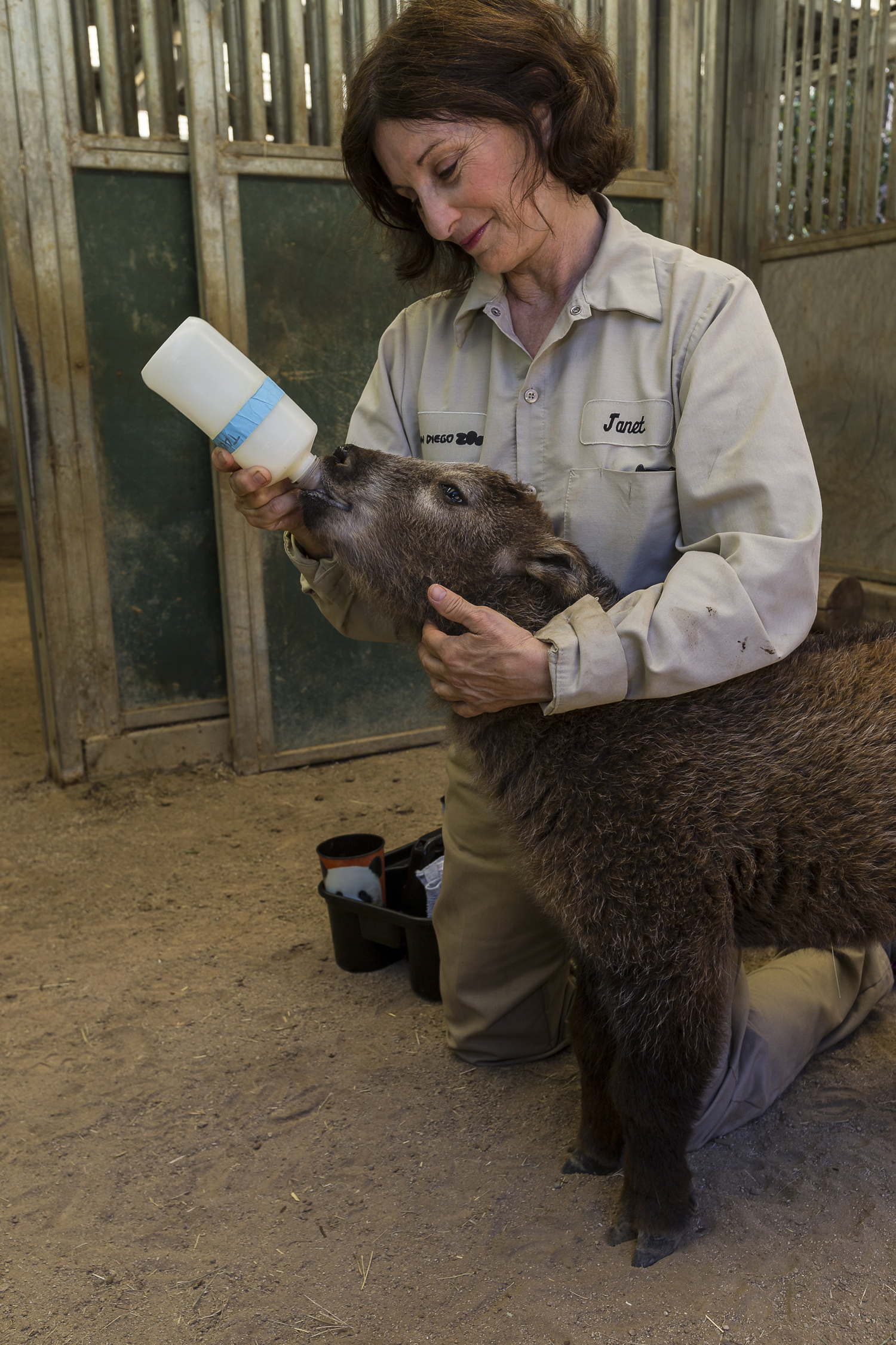Baby Takin Bottle Feeding