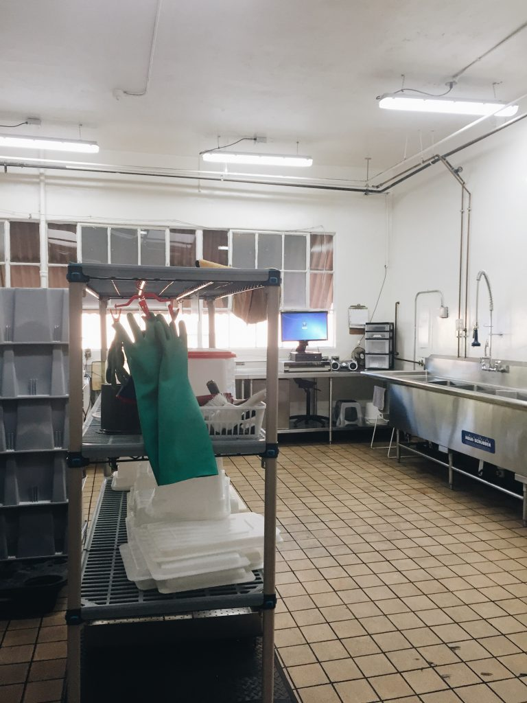 Food Preparation Services San Diego