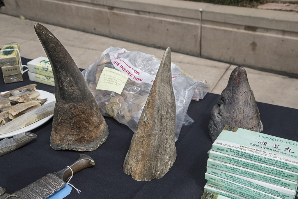 HEADER HERE Unbeknownst to many, the US is one of the largest consumers of smuggled wildlife and wildlife products, including rhino horn. Rhino horn is made of keratin, the same material as our hair and fingernails.