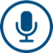audioeye voice icon
