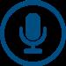 audioeye voice icon